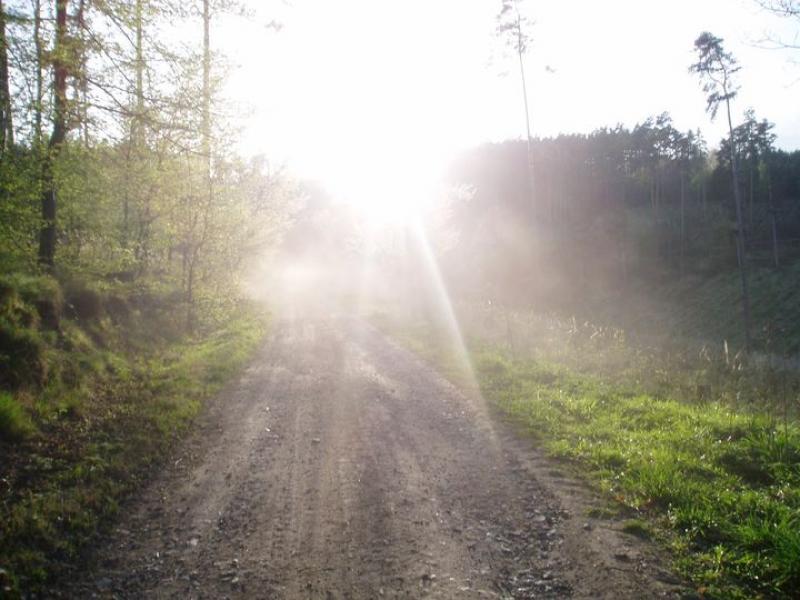 Cesta kolem kopce
